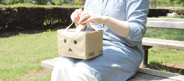 130529 danbo news_large_carton_bag4