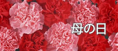 mother-s-day-japan