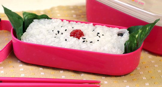 Japanese-Food-iPhone-Cases (1)