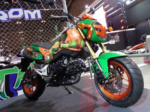 Ninja Turtles bike (1)