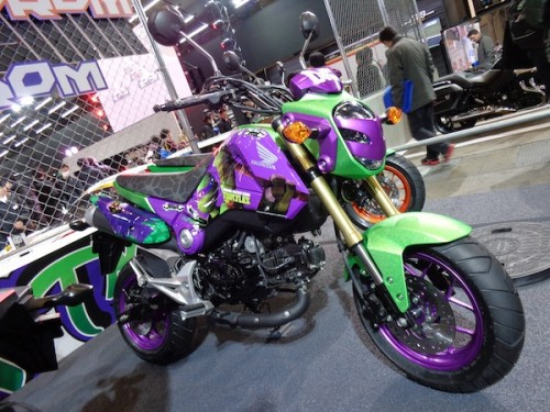 Ninja Turtles bike (2)