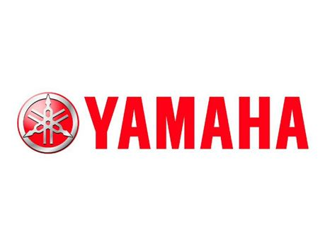 1008_atvp_01_ih+yamaha_2011_Grizzly_450_eps_best_of_the_best+yamaha_logo