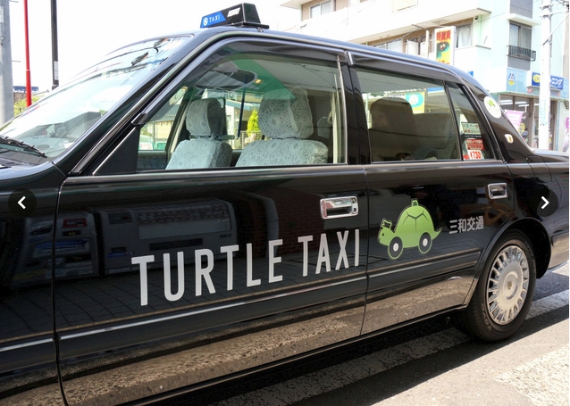 Turtle Taxi (1)