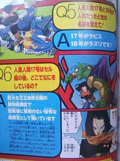 android_17_18 (2)