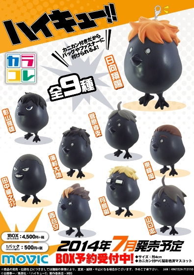 haikyuu-bird-02