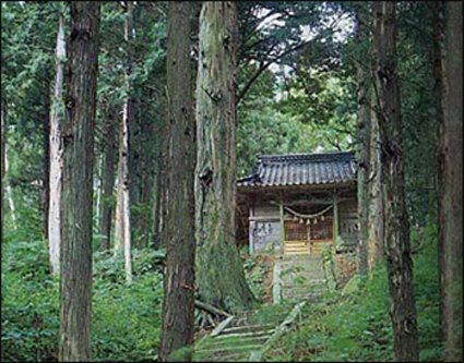 japan-ghost-place (4)