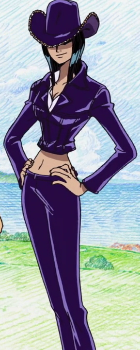 Source: http://img4.wikia.nocookie.net/__cb20130910013600/onepiece/images/1/16/Nico_Robin_Jaya_Arc.png
