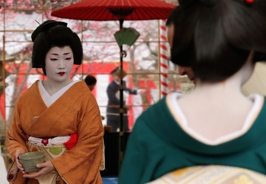 geisha rules (4)