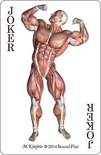 muscle cards (4)