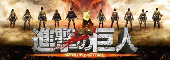 Attack on Titan Kucing Xueyu Taiwan 9