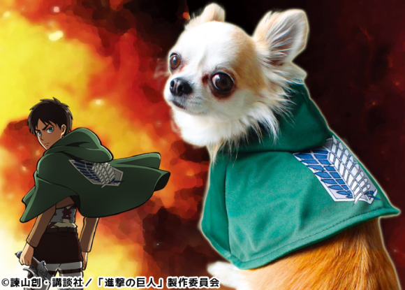 Attack on Titan Anjing 1