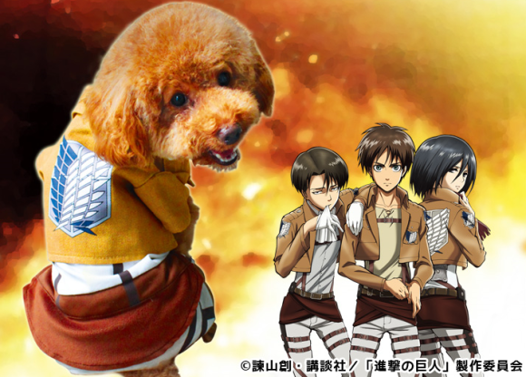 Attack on Titan Anjing 3