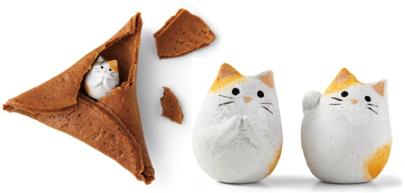 Fortune Cookie Kucing featured