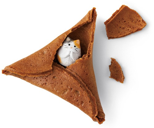 Fortune Cookie Kucing