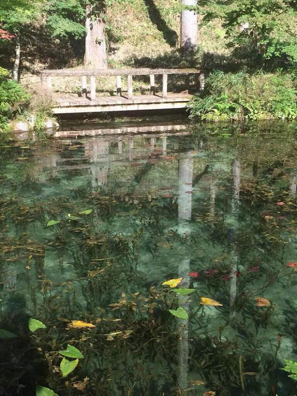 Monet's Pond Gifu 4