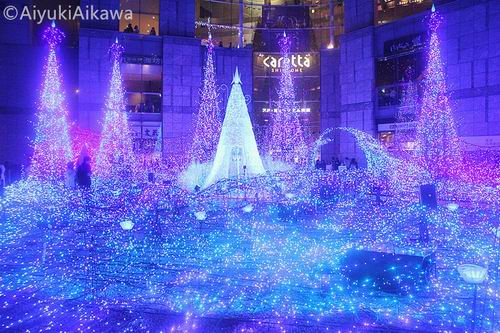 shiodome caretta illumination (10)