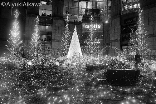 shiodome caretta illumination (15)