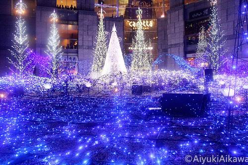 shiodome caretta illumination (16)