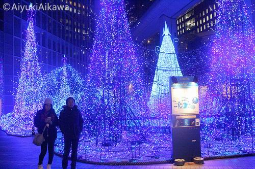 shiodome caretta illumination (2)