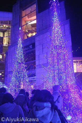 shiodome caretta illumination (20)