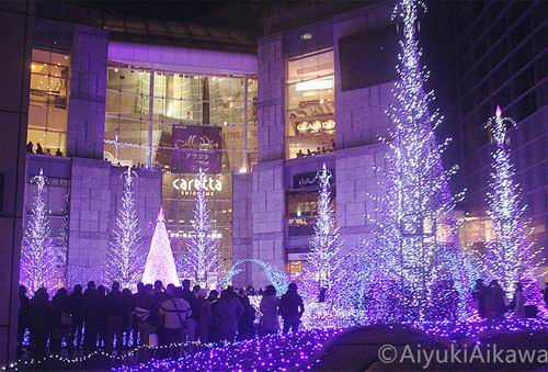shiodome caretta illumination (23)