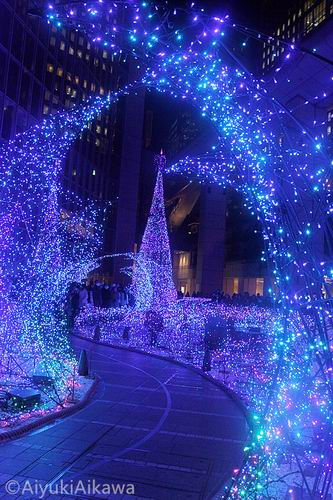 shiodome caretta illumination (24)