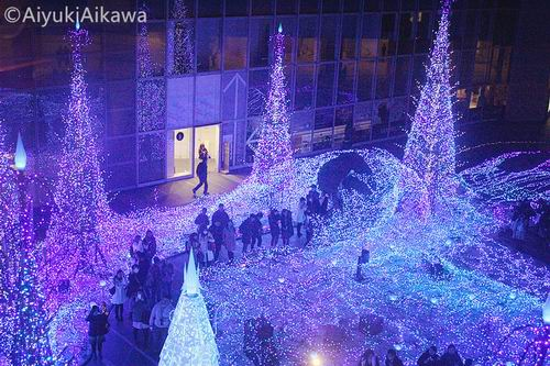 shiodome caretta illumination (5)