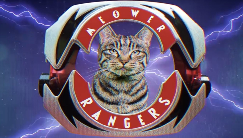 Mighty Morphin Meower Ranger