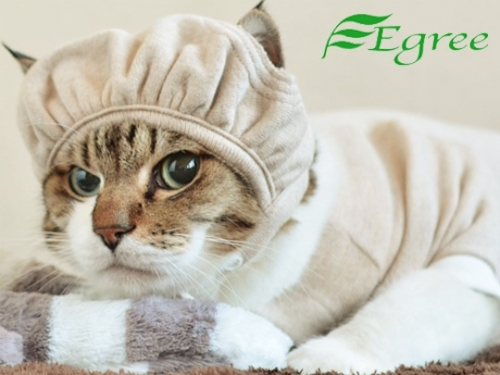 egree-cat-hat-cap-1