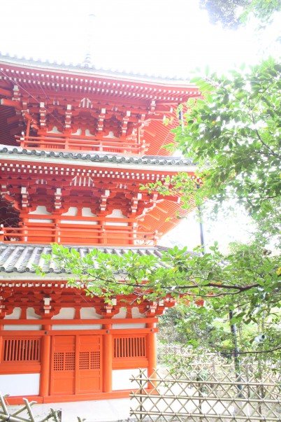 Photo : Ryan Latta on Flickr