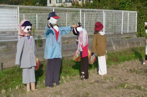 softball scarecrowsjapan (2)