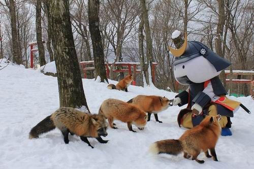 zao-fox-village-japan (3)